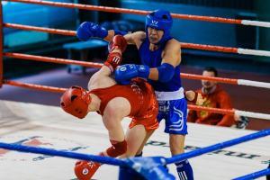 Boxer im Boxring wie beim Ausmisten mit STORITY