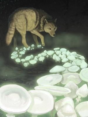 "A wolf of death walks through the woods creating amanita ""death angel"" mushrooms"