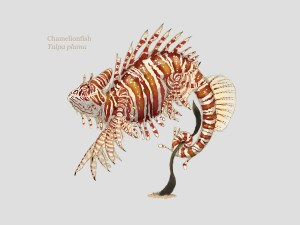 A creature design chamelionfish based on a chameleon and a lionfish
