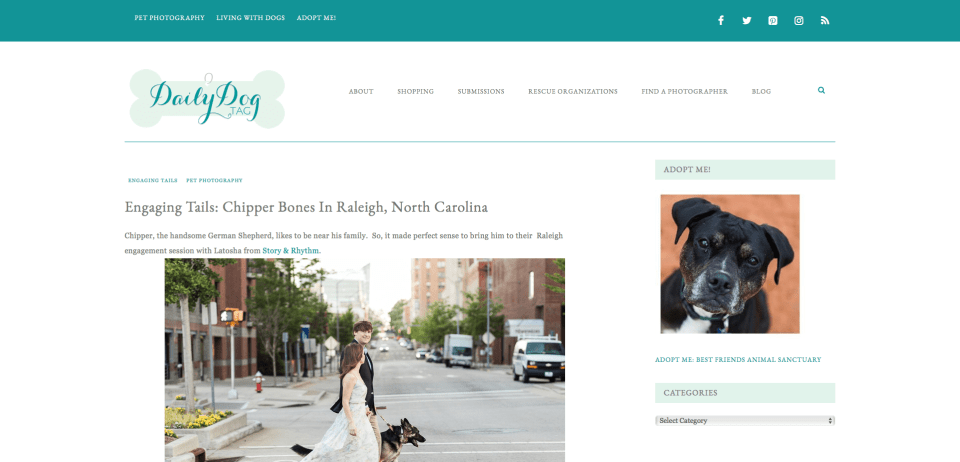 Raleigh engagement photo session with dog