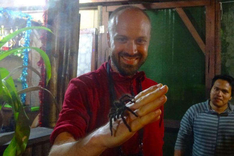 Making new friends: our jungle lodge had a pet tarantula