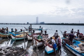 Livelihoods have been destroyed due to pollution