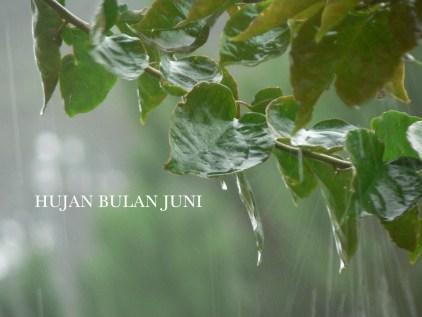 hujan1