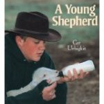youngshepherd