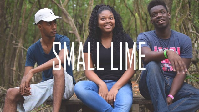 E7: Colourism, State Neglect | Small Lime (Tobago)