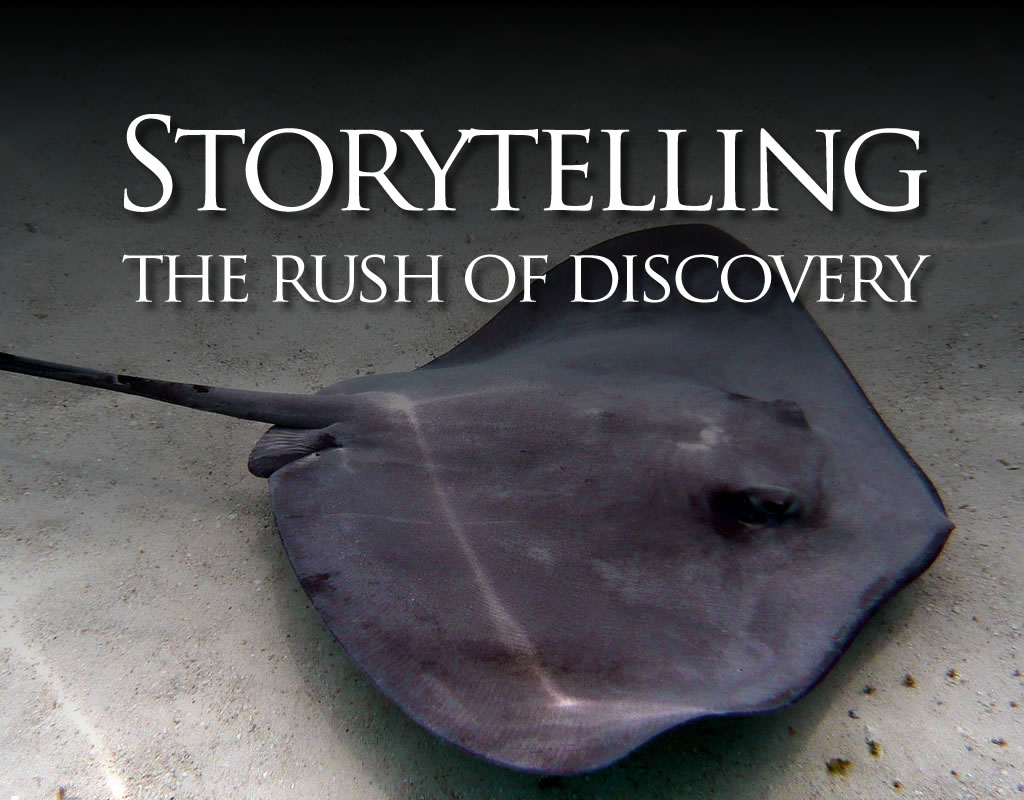 storytelling: rush of discovery