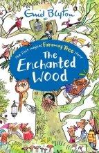 Enchanted Wood (The Magic Faraway Tree) - Story Snug