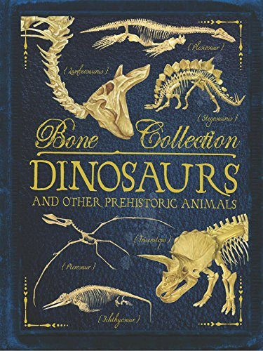 Dinosaurs and Other Prehistoric Animals by Camilla de le Bedoyere, Rob Colson, Elizabeth Gray & Steve Kirk