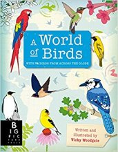 A World of Birds - Story Snug