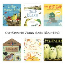 Favourite Picture Books About Birds - Story Snug