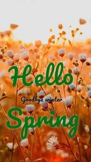 Hello Spring Goodbye winter