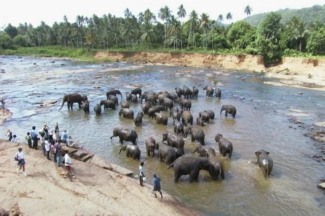 Long term travel in Sri Lanka