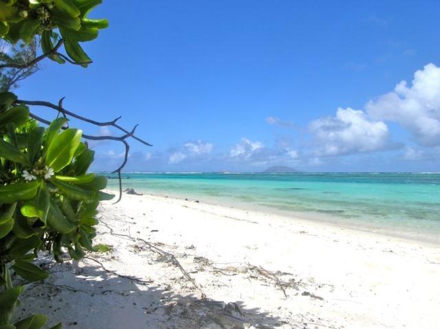 Beautiful beach - Mauritius travel tips