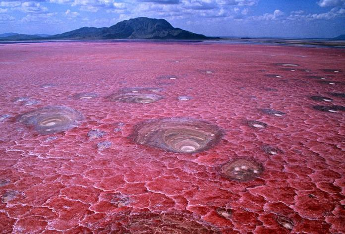 Shades of the World: blood waters of Lake Natron having a crack-like surface