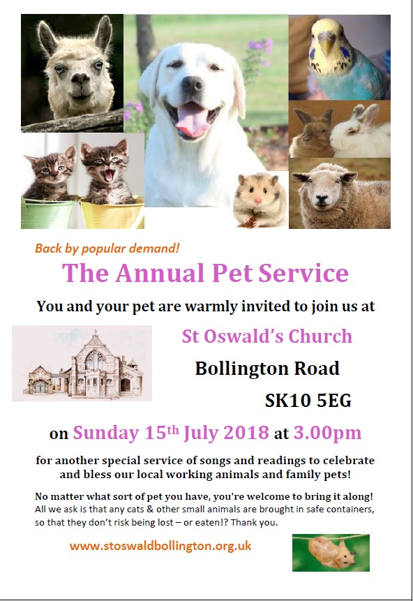 Coming Up – Annual Pet Service