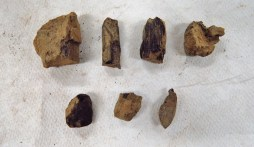 The pieces of charcoal found in the first bag of artifacts from SU 1211.