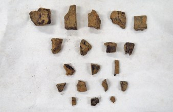 Charcoal bits found in the first bag of SU 1213.