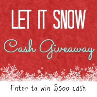 Falling Like Snow with a $500.00 Cash Giveaway