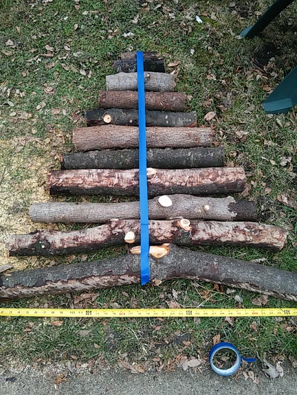 find-center-of-log-christmas-tree