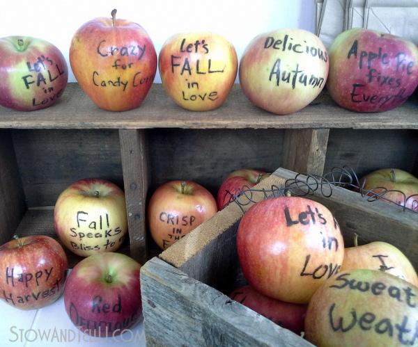 fall-decor-gift-apples-edible-writing-http://stowandtellu.com