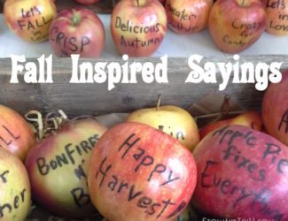 fall-inspired-sayings-with-edible-food-marker-on-apples