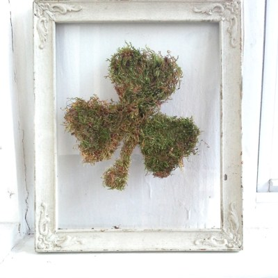DIY Framed Moss Shamrock on Glass
