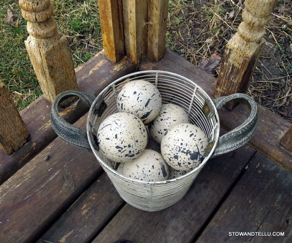 basket-decorative-speckled-eggs - StowAndTellU.com