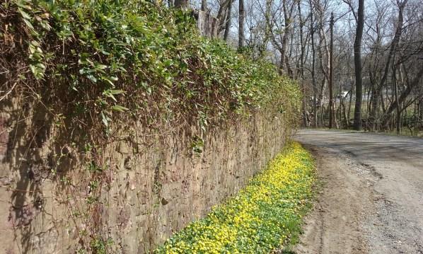 stone-wall-valley-forge-pa - StowandTellU,.com