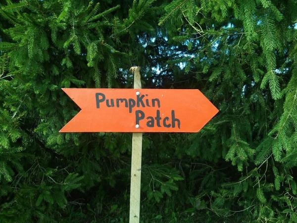 pumpkin-patch-sign