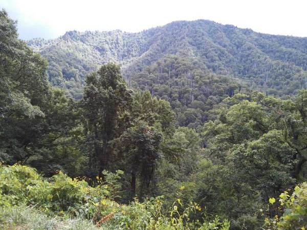 smoky-mountain-national-park - StowAndTellU.com