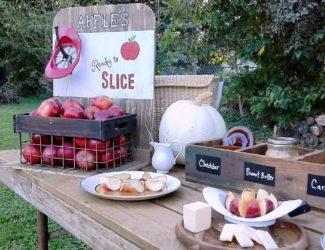 homemade-party-apple-bar|stowandtellu