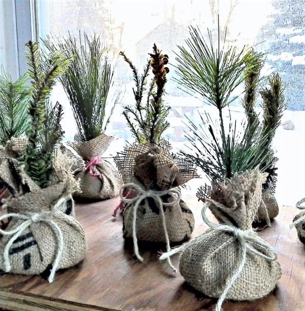 Mini faux seedlings from upcycled Christmas pine tree decor | StowandTellU.com