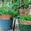 Real metal looking copper paint dipped planters | stowandtellu.com