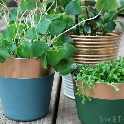 Fools Copper Paint Dipped Planters