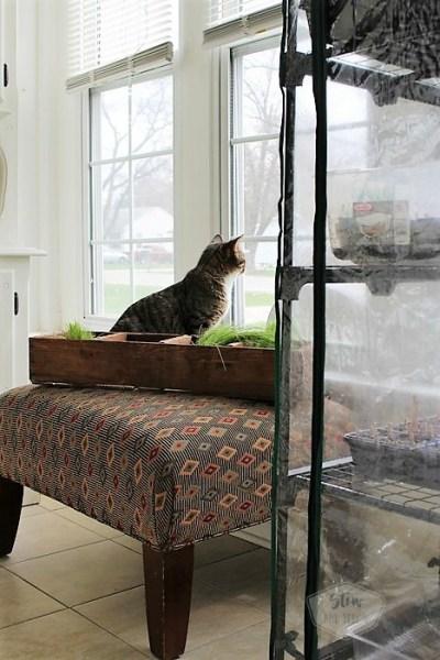 Small-home-sun-porch-furniture-rearrange | stowandtellu