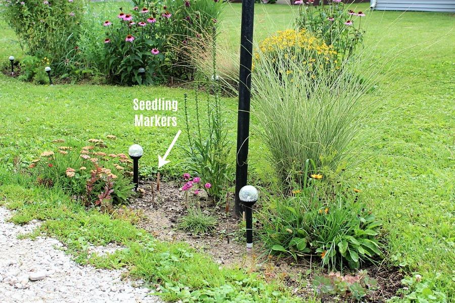 Diy Flower Bed Seedling Markers