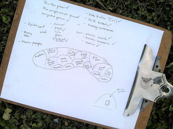 How to start a diy flower bed | hand sketched garden chart | stowandtellu.com