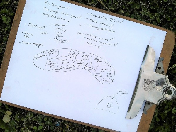 How to start a diy flower bed   hand sketched garden chart   stowandtellu.com