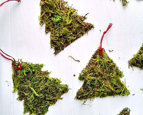 Moss Christmas Tree Ornaments and Gift Tags