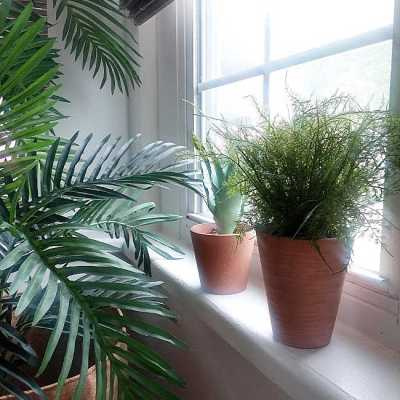 8 Tips for Styling Faux Plants Like an Indoor Gardener