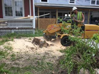 Working on our Front Lawn