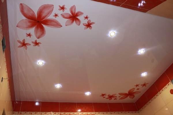 Натяжные-потолки-с-фотопечатью-их-особенности-виды-цена-плюсы-и-минусы-5