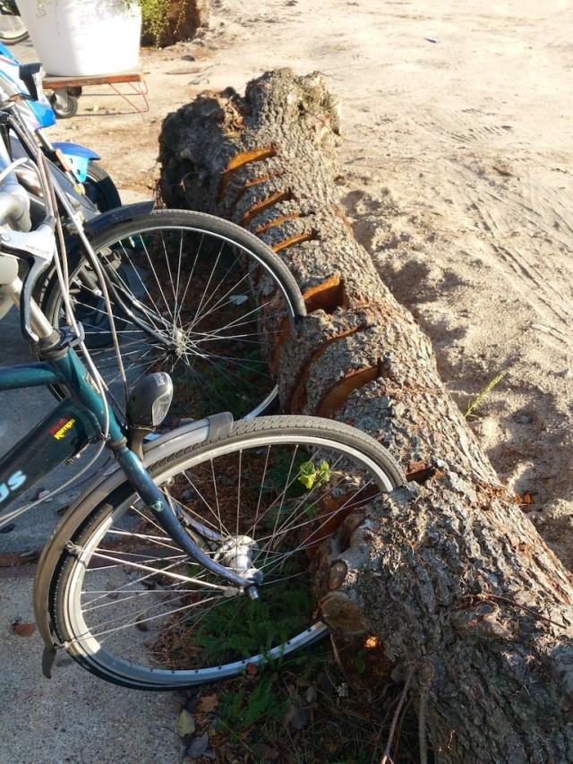 fietsboom