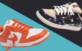 Dunk vs SB Dunk feature