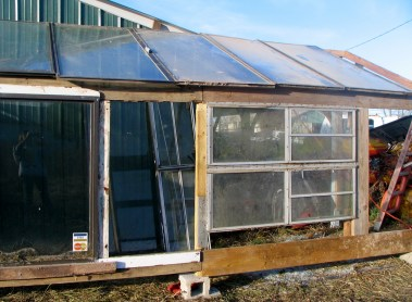 Start of the greenhouse 21