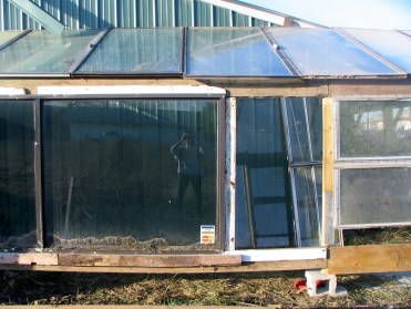 Start of the greenhouse 23