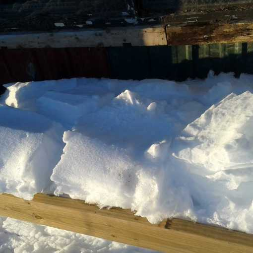 Snow and Greenhouse picts 042