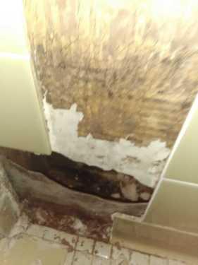 Bathroom Remodel in Rogers 1