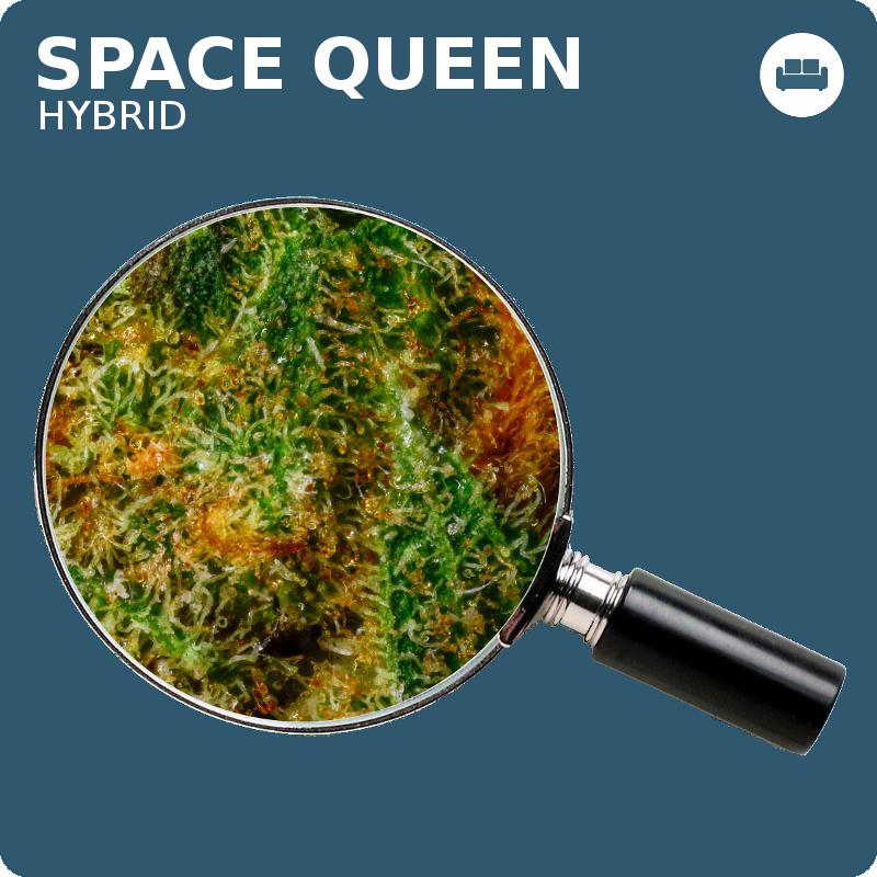 space-queen_mag_1