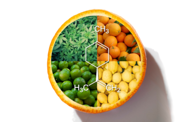 The Limonene Terpene: Strains, Effects, and Benefits